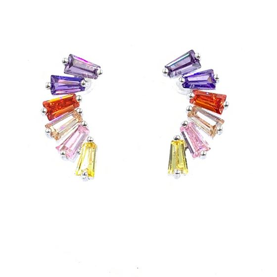 Multi Color Silver Earrings